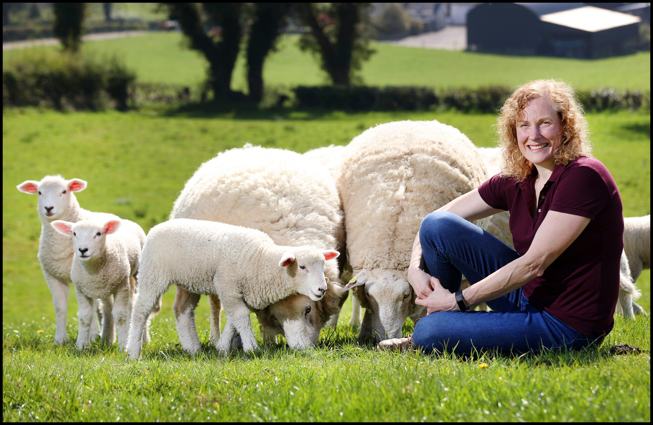 Sandra Coote on her farm in Knocknaveigh Virginia Co Cavan where she breeds Roscommon Sheep. Photo by Steve Humphreys 15th April 2020